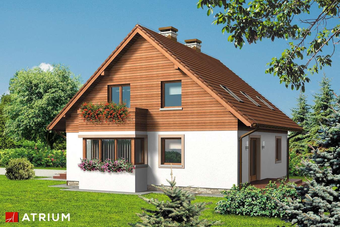 Projekty domów - Projekt domu z poddaszem LUNA - wizualizacja 2