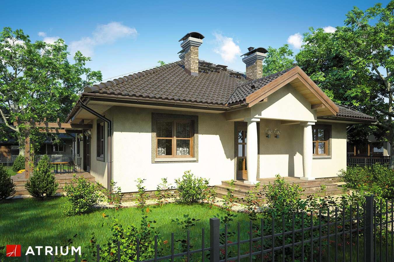 Projekty domów - Projekt domu parterowego TEXAS - wizualizacja 1