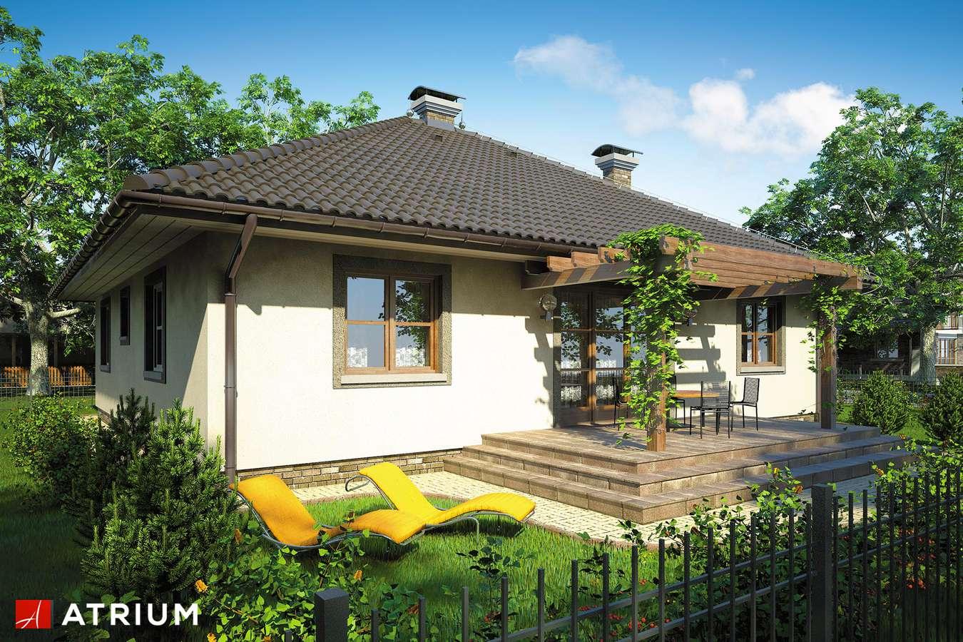 Projekty domów - Projekt domu parterowego TEXAS - wizualizacja 2