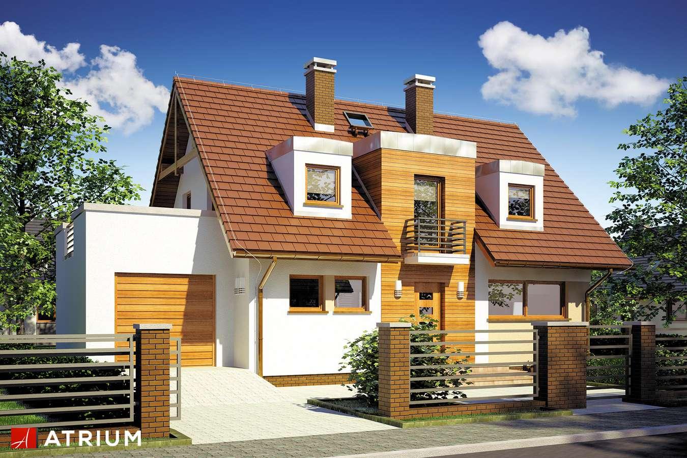 Projekty domów - Projekt domu z poddaszem DIANA II - wizualizacja 1