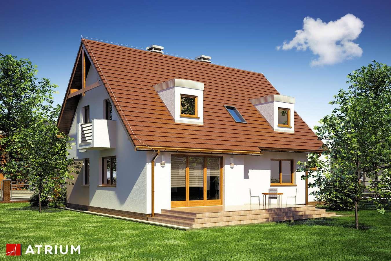 Projekty domów - Projekt domu z poddaszem DIANA II - wizualizacja 2
