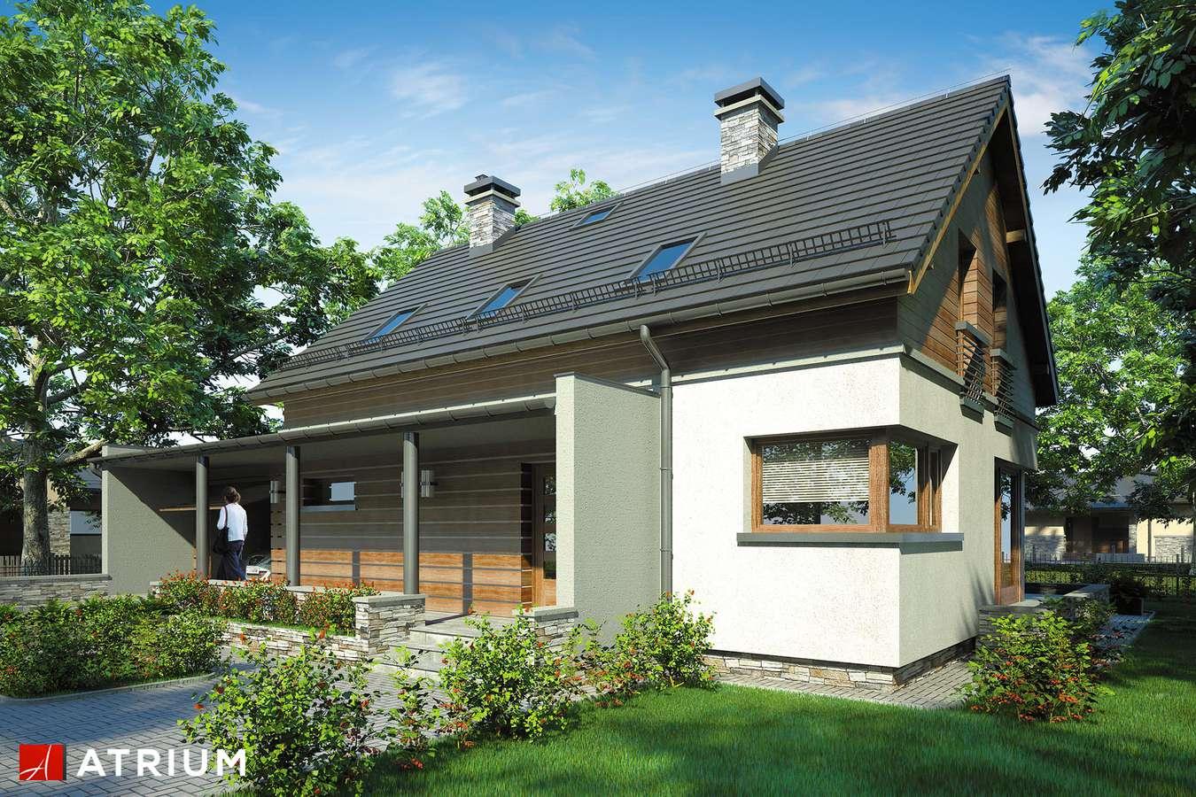 Projekt domu z poddaszem SAMBA - wizualizacja 1