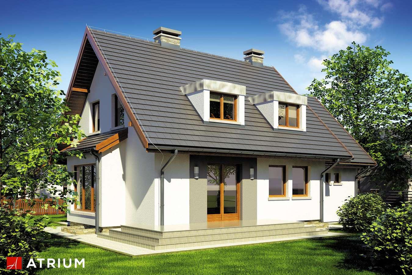 Projekty domów - Projekt domu z poddaszem NAVI - wizualizacja 2