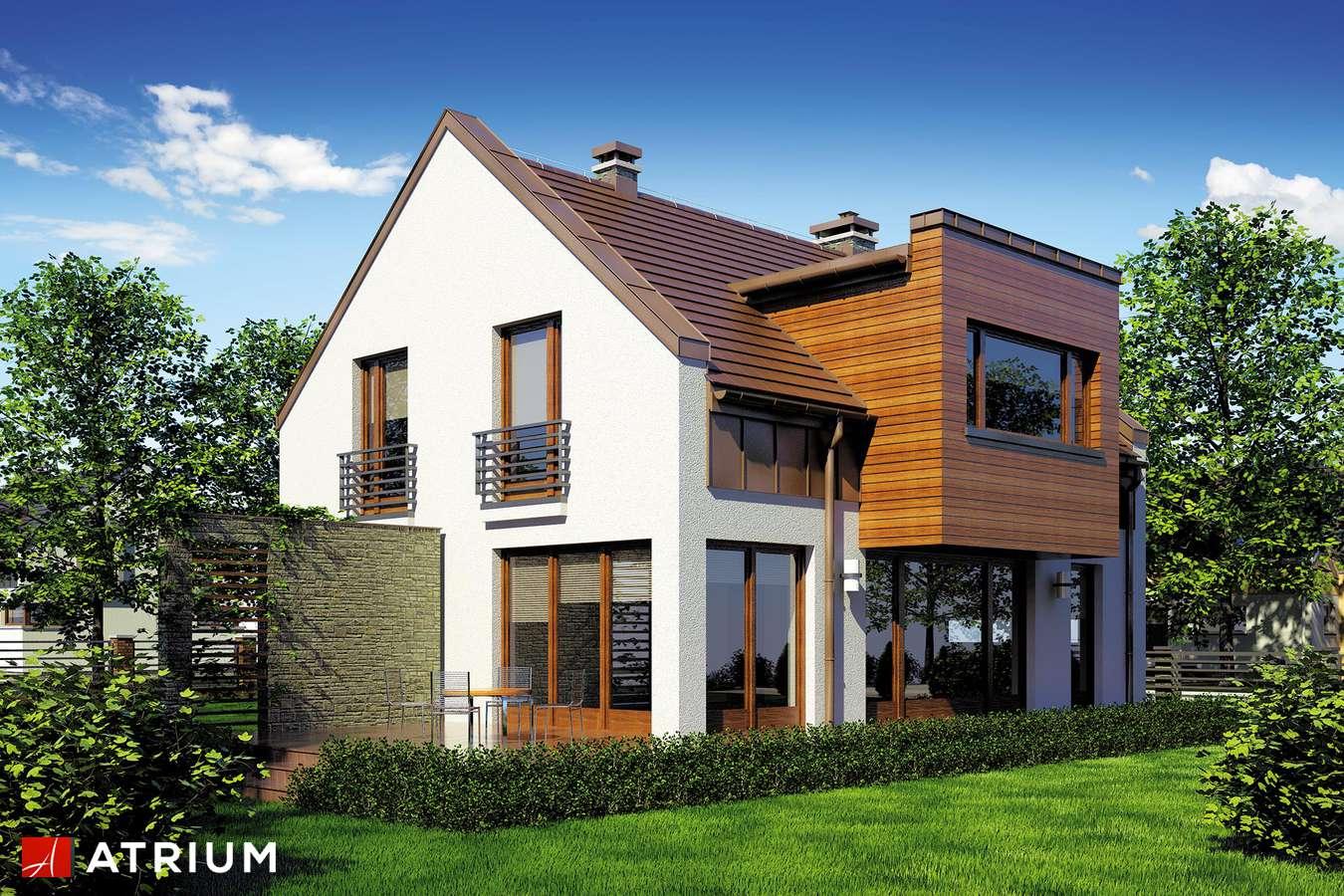 Projekty domów - Projekt domu z poddaszem WENA - wizualizacja 1