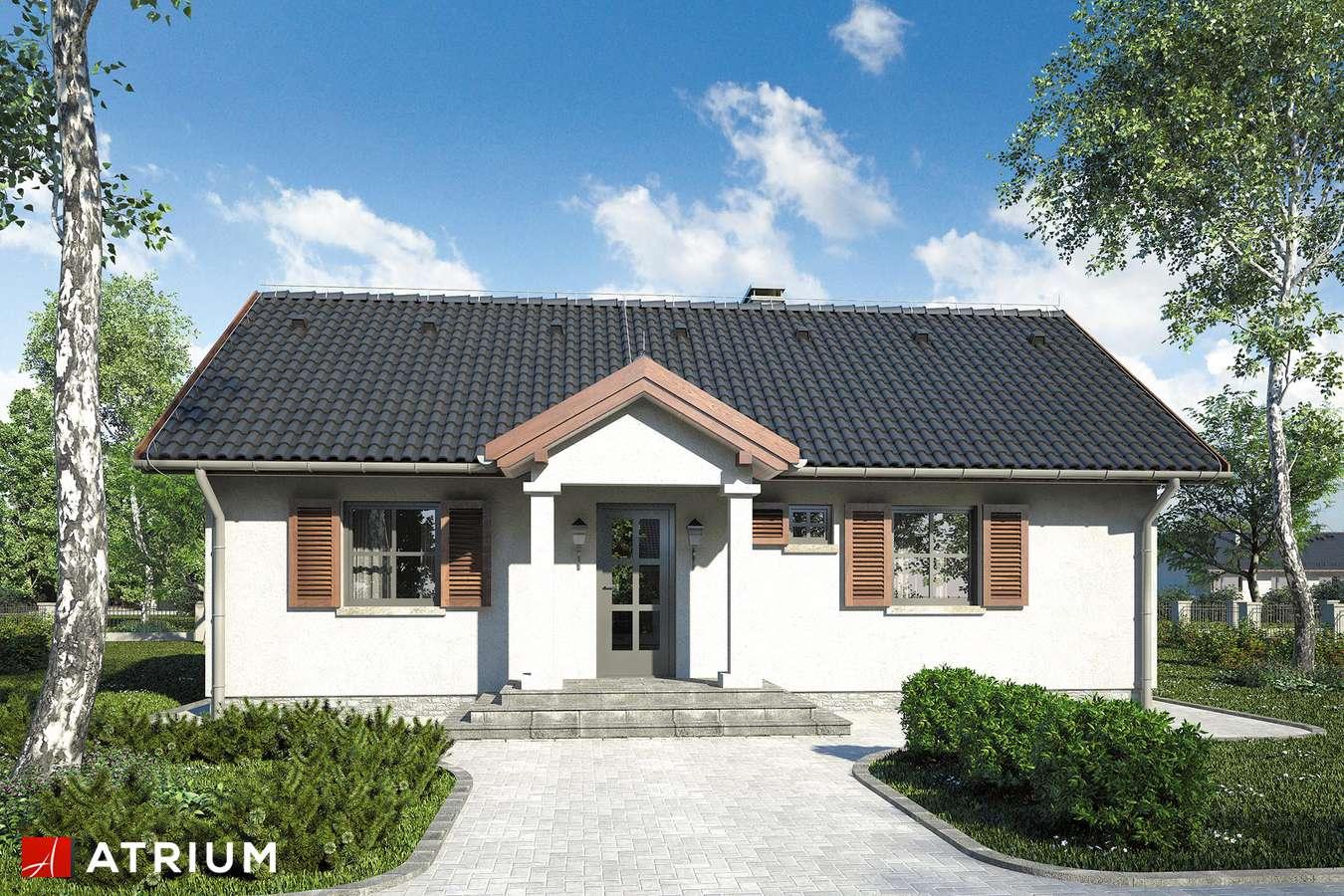 Projekty domów - Projekt domu parterowego EWKA - wizualizacja 1