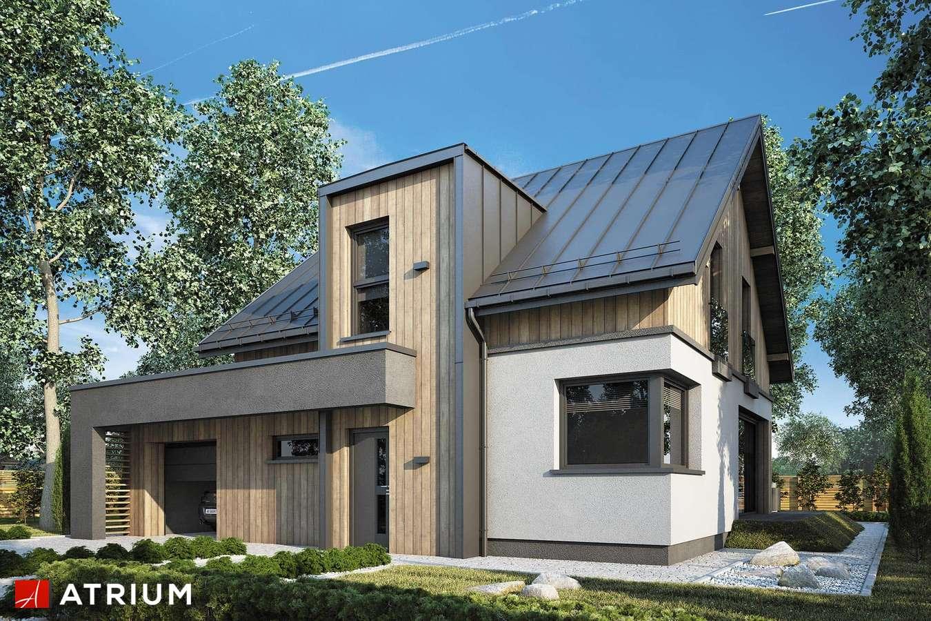 Projekty domów - Projekt domu z poddaszem POLO II - wizualizacja 1