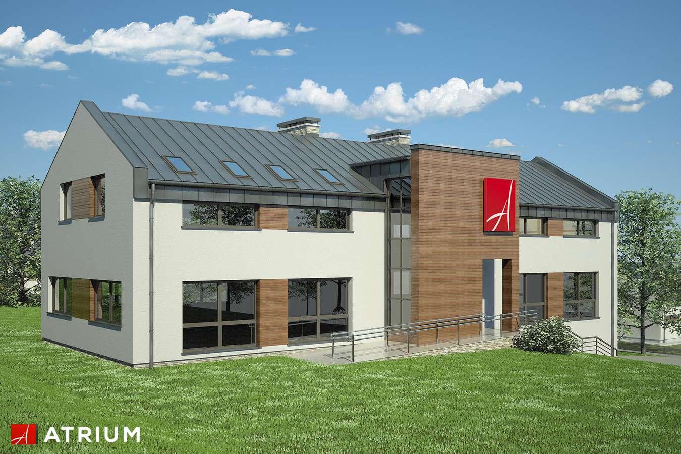 Projekty domów - Projekt domu z poddaszem USłUGOWY - wizualizacja 2