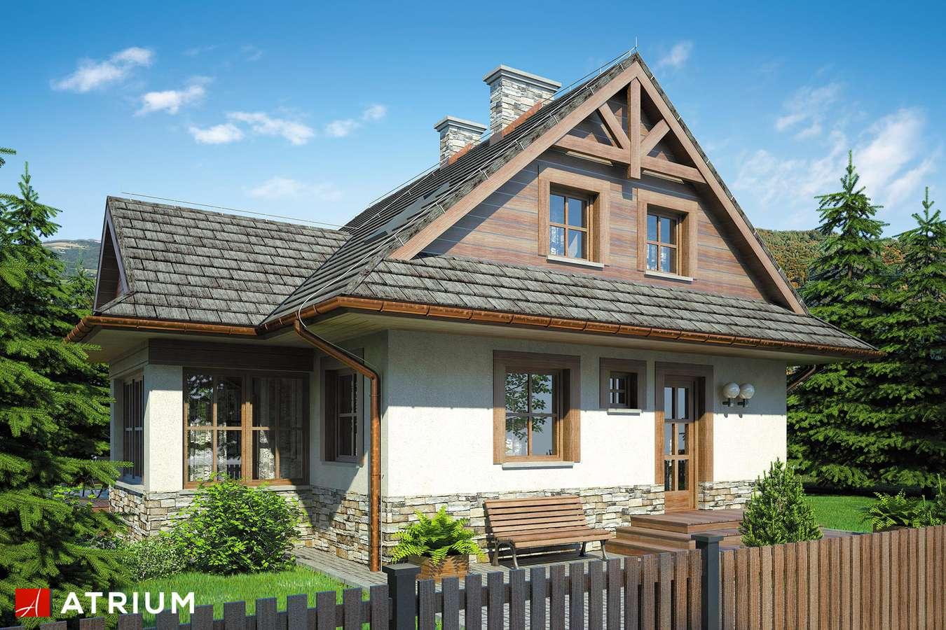 Projekty domów - Projekt domu z poddaszem MALINOWA CHATA - wizualizacja 1