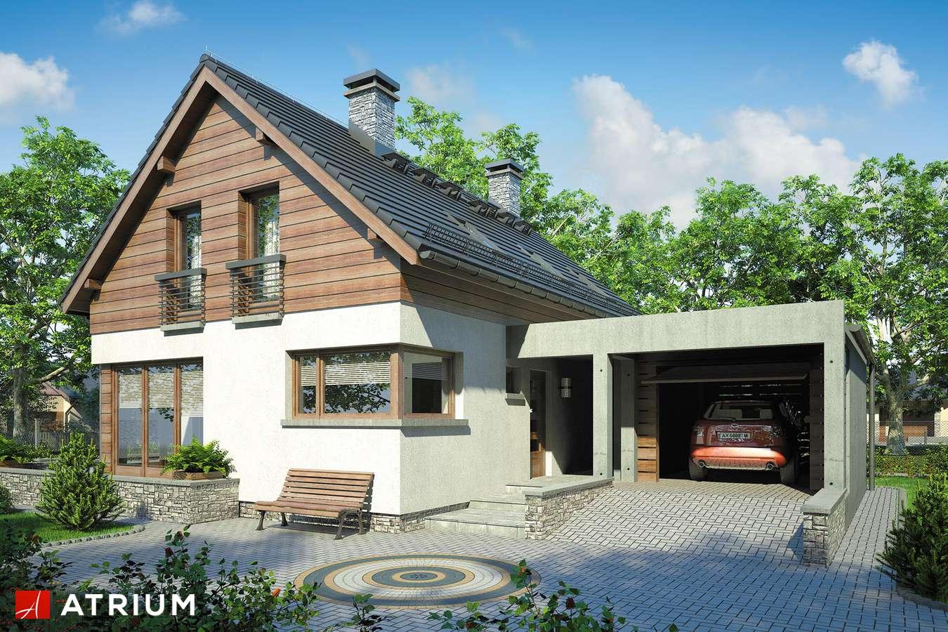 Projekty domów - Projekt domu z poddaszem SAMBA II - wizualizacja 1