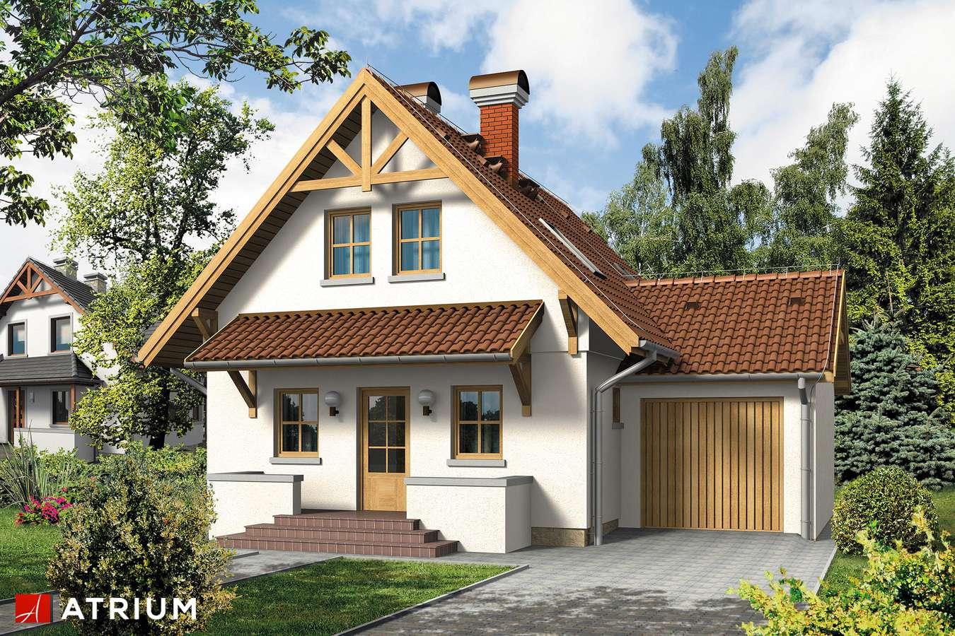 Projekty domów - Projekt domu z poddaszem TOMCIO PALUCH - wizualizacja 1