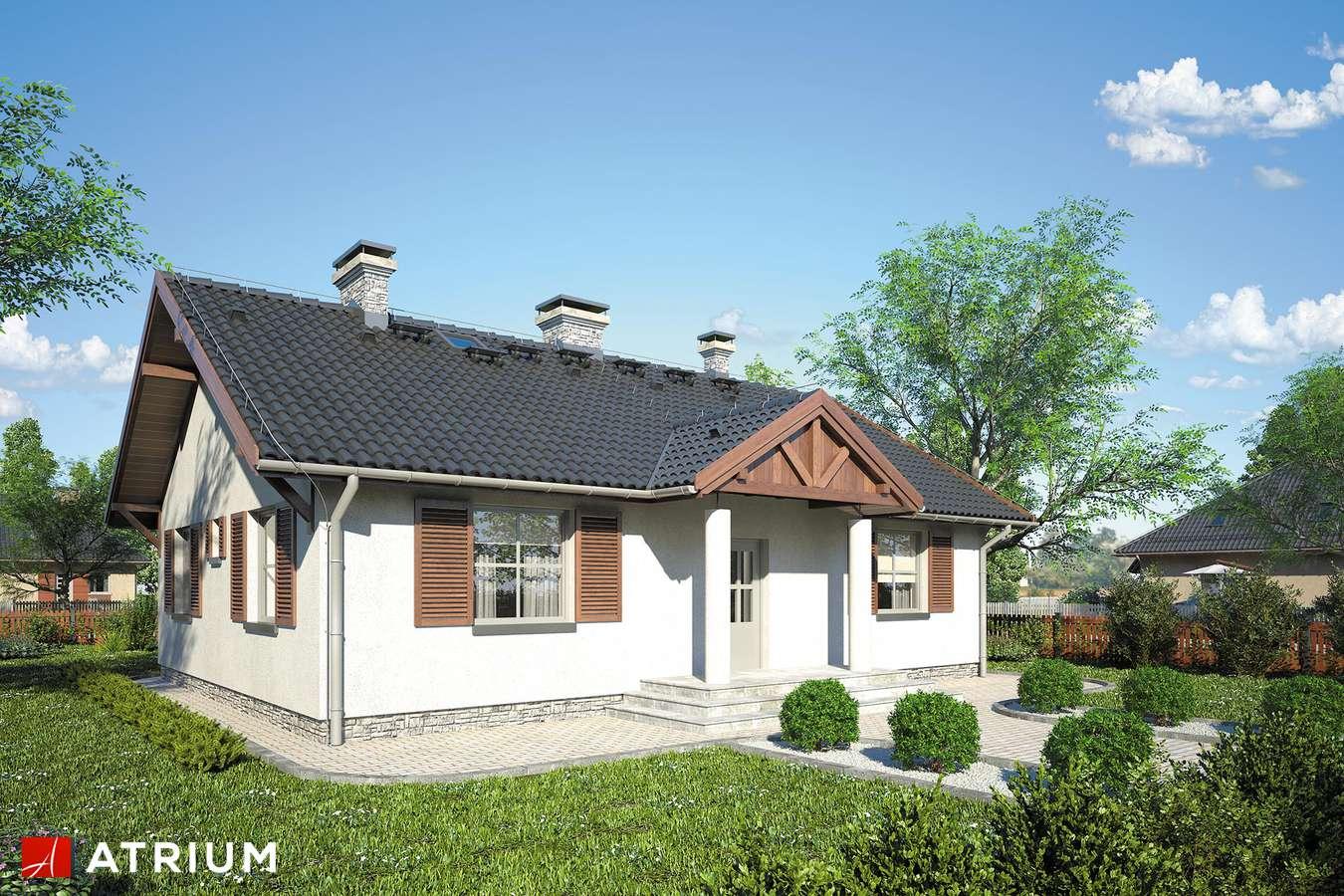 Projekt domu parterowego DWORECZEK - wizualizacja 1