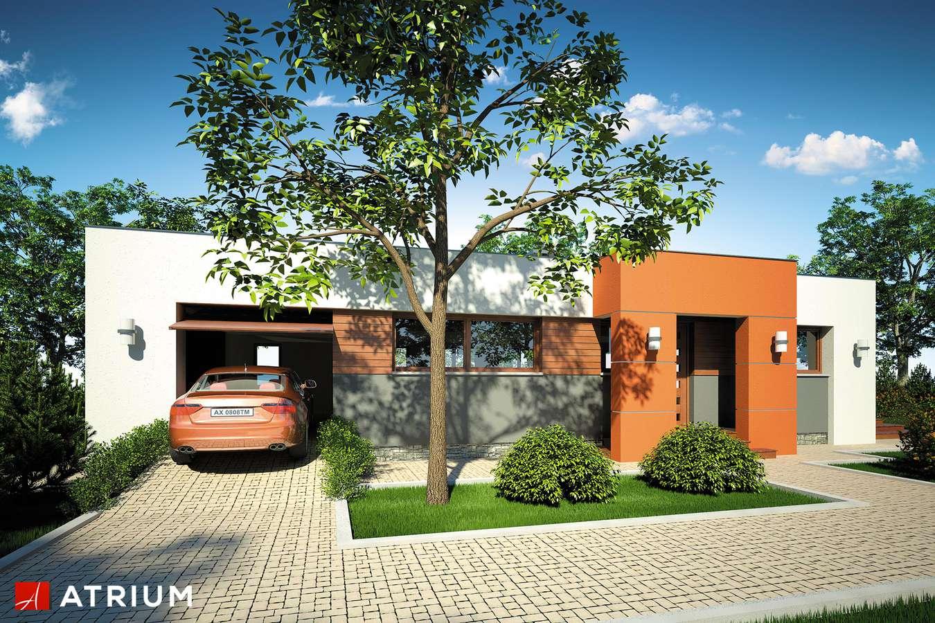 Projekty domów - Projekt domu parterowego VIVA - wizualizacja 1