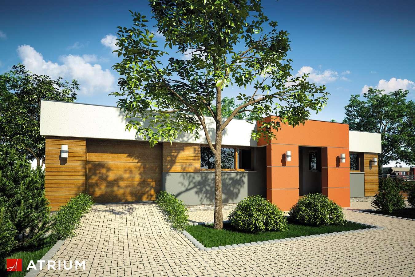 Projekty domów - Projekt domu parterowego VISTA - wizualizacja 1