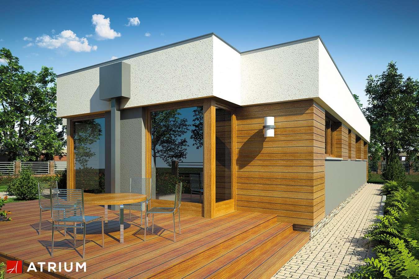 Projekty domów - Projekt domu parterowego VISTA - wizualizacja 2