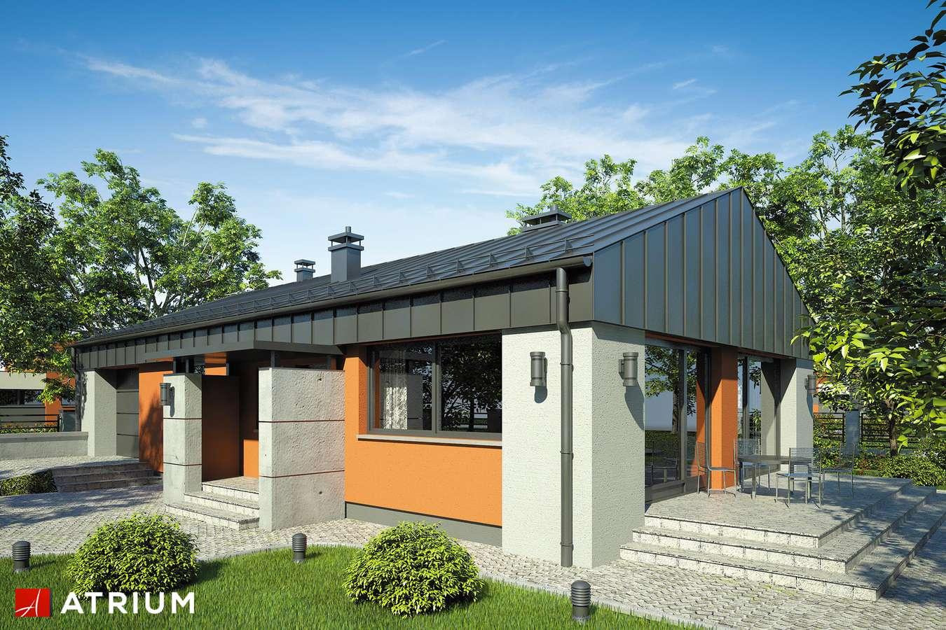 Projekty domów - Projekt domu parterowego VASCO - wizualizacja 1