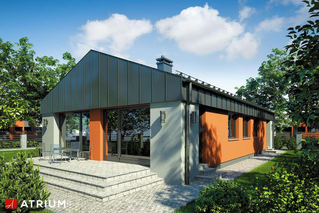 Projekty domów - Projekt domu parterowego VASCO - wizualizacja 2