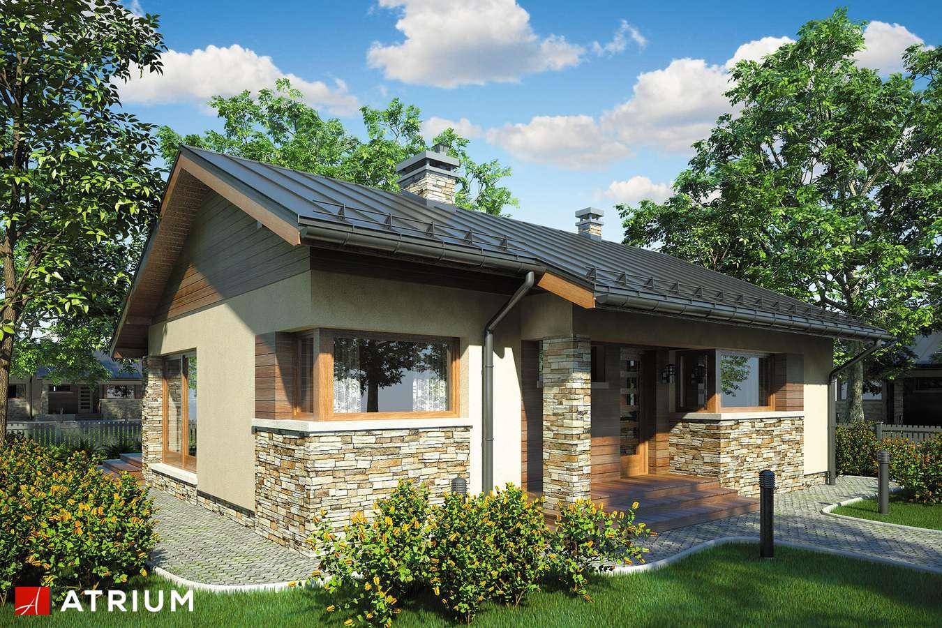 Projekty domów - Projekt domu parterowego RICARDO - wizualizacja 2 - wersja lustrzana