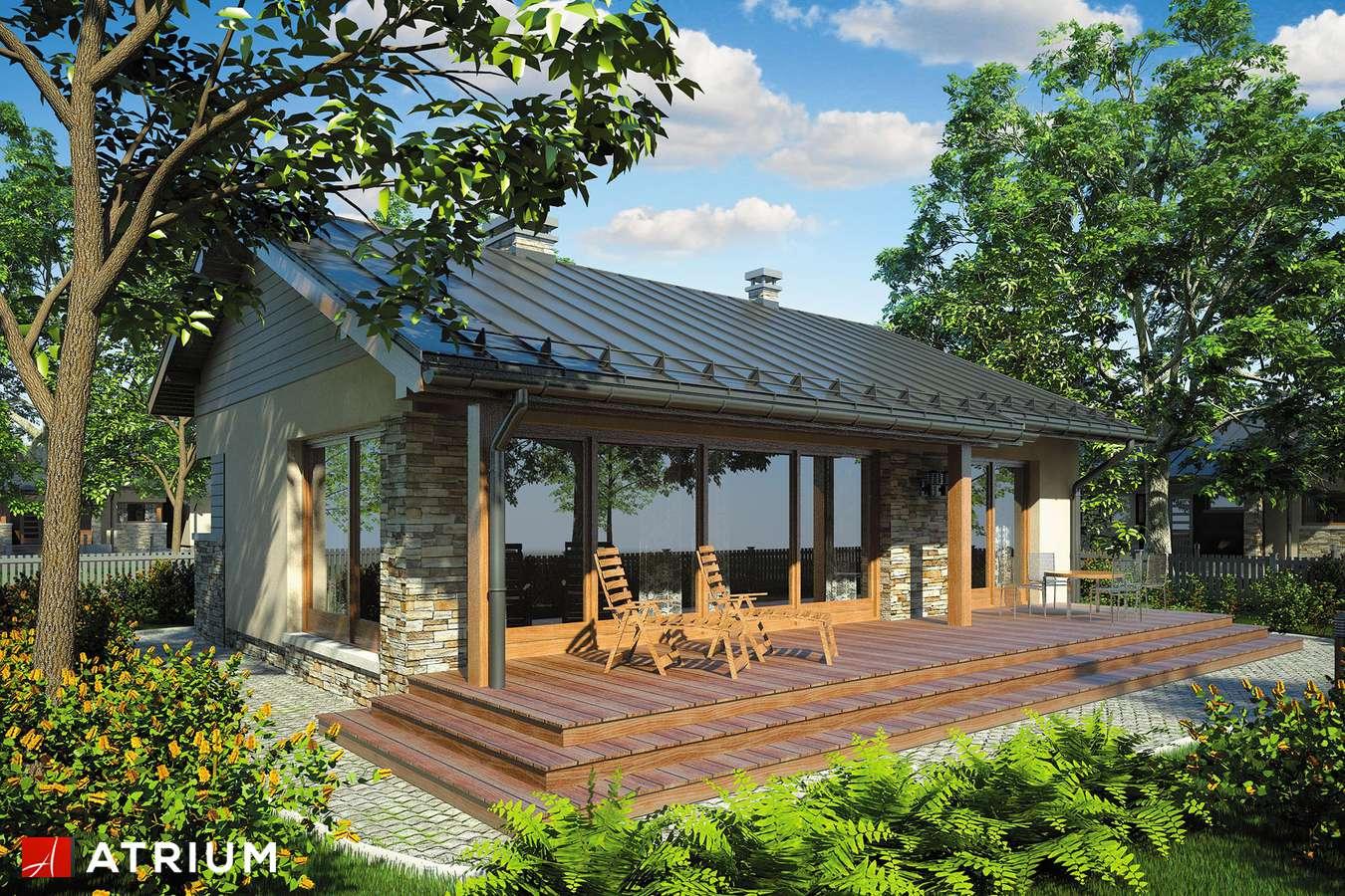 Projekty domów - Projekt domu parterowego RICARDO - wizualizacja 1