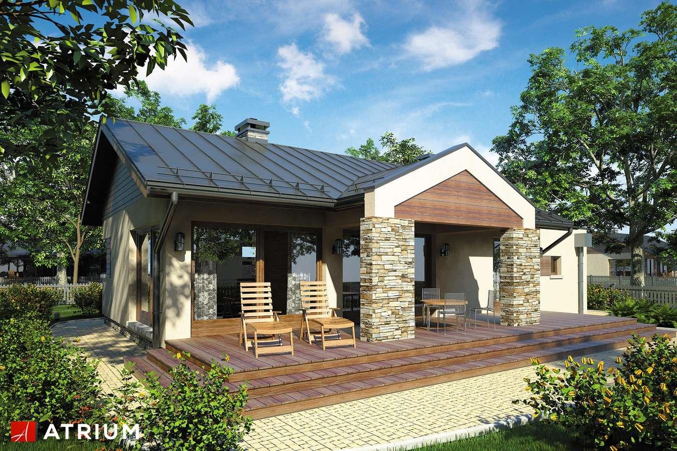Projekty domów - Projekt domu parterowego RICARDO II - wizualizacja 2