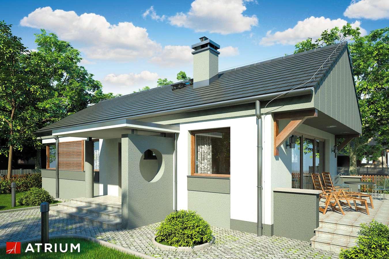 Projekty domów - Projekt domu parterowego WEKTOR II - wizualizacja 1
