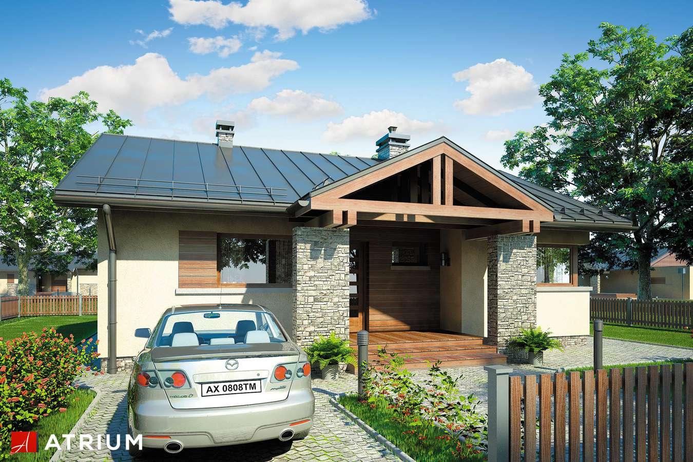 Projekty domów - Projekt domu parterowego RICARDO III - wizualizacja 1