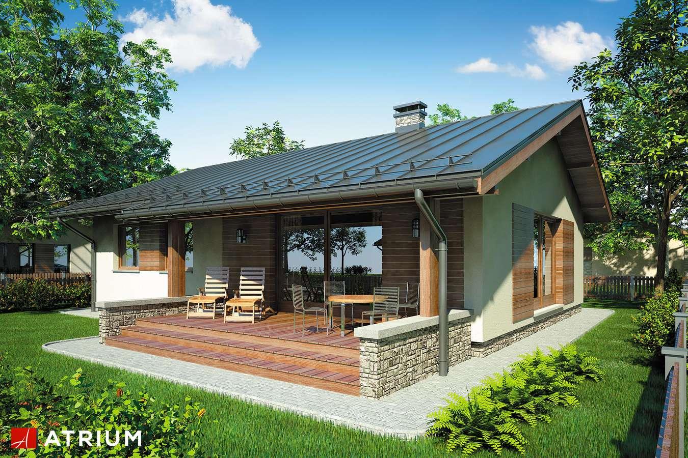Projekty domów - Projekt domu parterowego NEO II - wizualizacja 1
