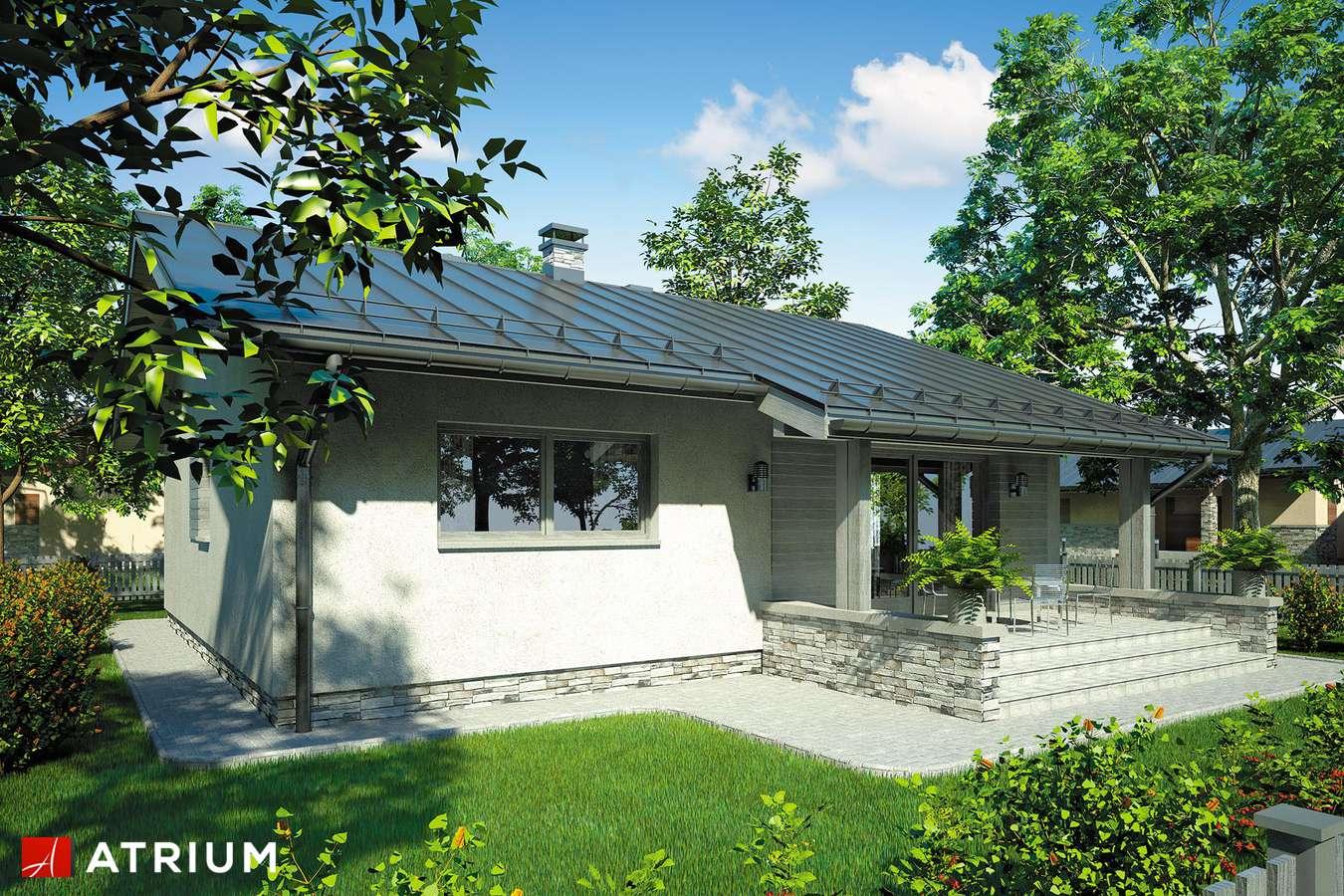 Projekty domów - Projekt domu parterowego NEO - wizualizacja 1