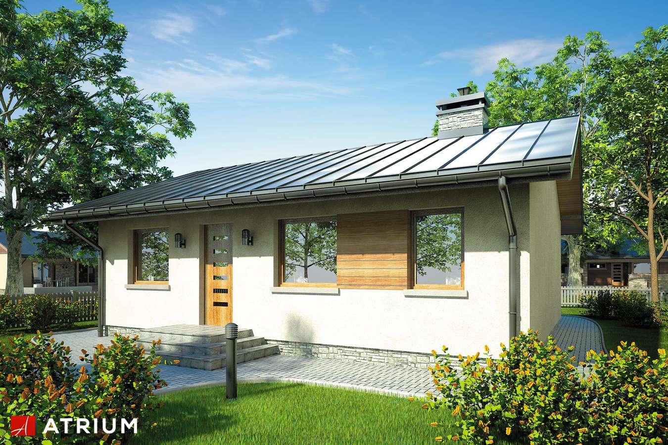 Projekty domów - Projekt domu parterowego REMIK - wizualizacja 1 - wersja lustrzana