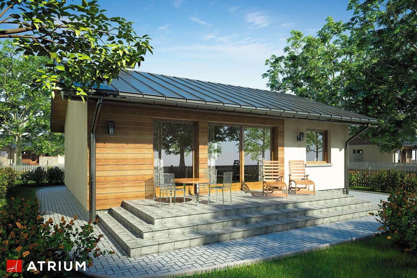 Projekty domów - Projekt domu parterowego REMIK - wizualizacja 2 - wersja lustrzana
