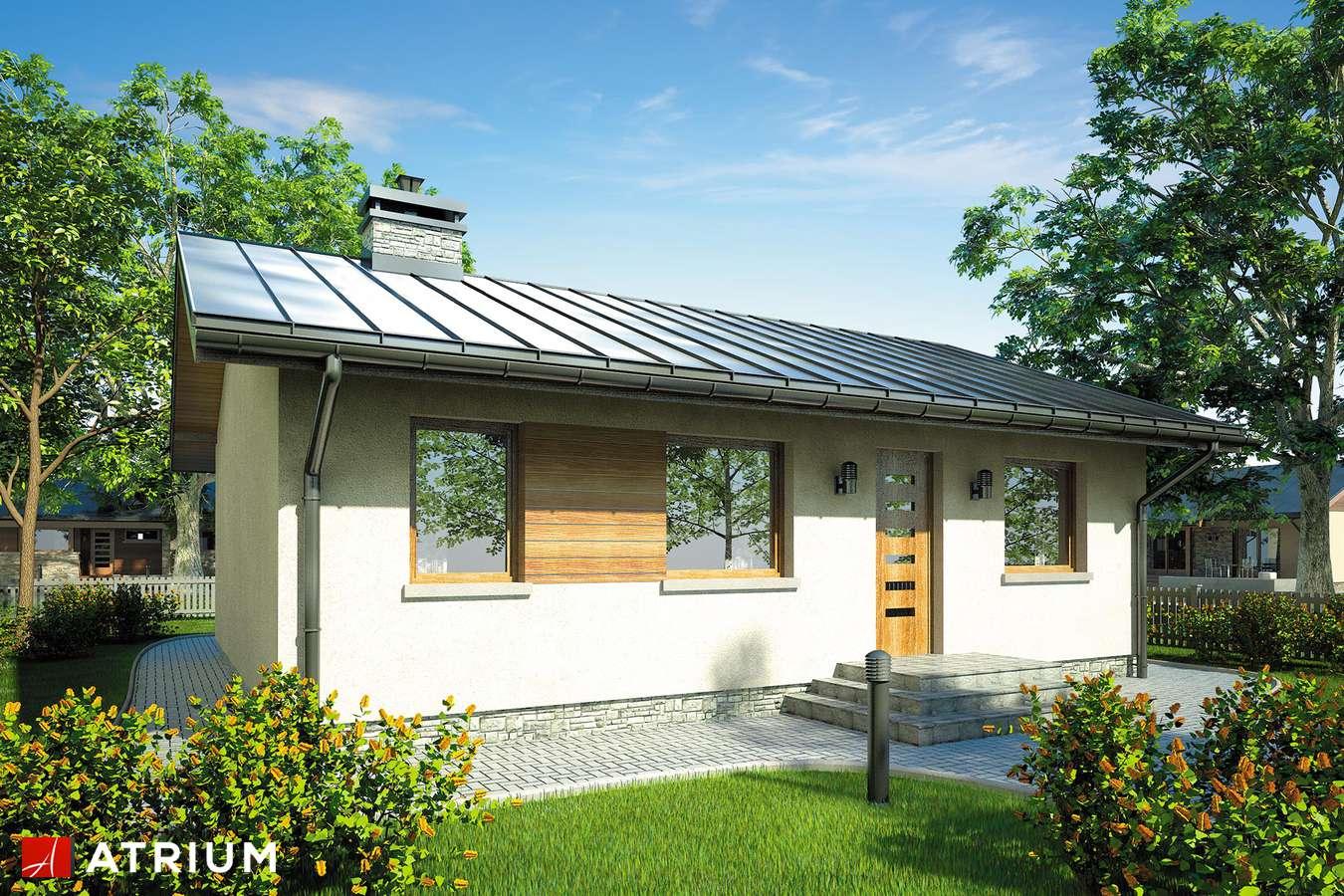 Projekty domów - Projekt domu parterowego REMIK - wizualizacja 1