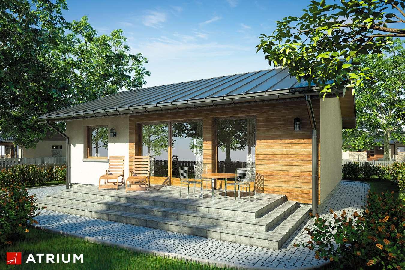 Projekty domów - Projekt domu parterowego REMIK - wizualizacja 2