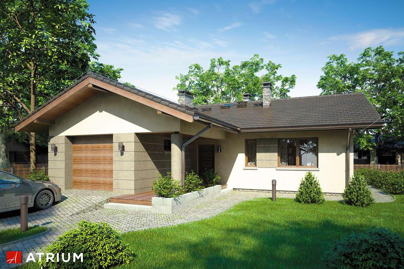 Projekty domów - Projekt domu parterowego OSTOJA III - wizualizacja 1