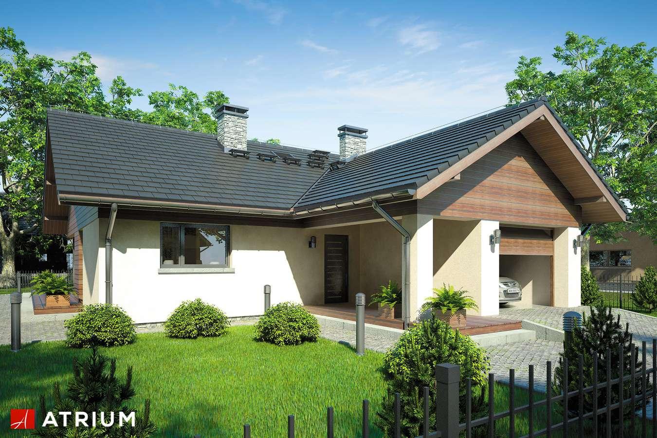 Projekty domów - Projekt domu parterowego WINSTON - wizualizacja 1