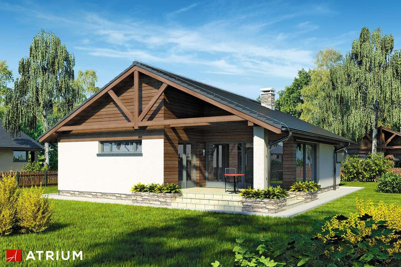 Projekty domów - Projekt domu parterowego PELIKAN IV - wizualizacja 1