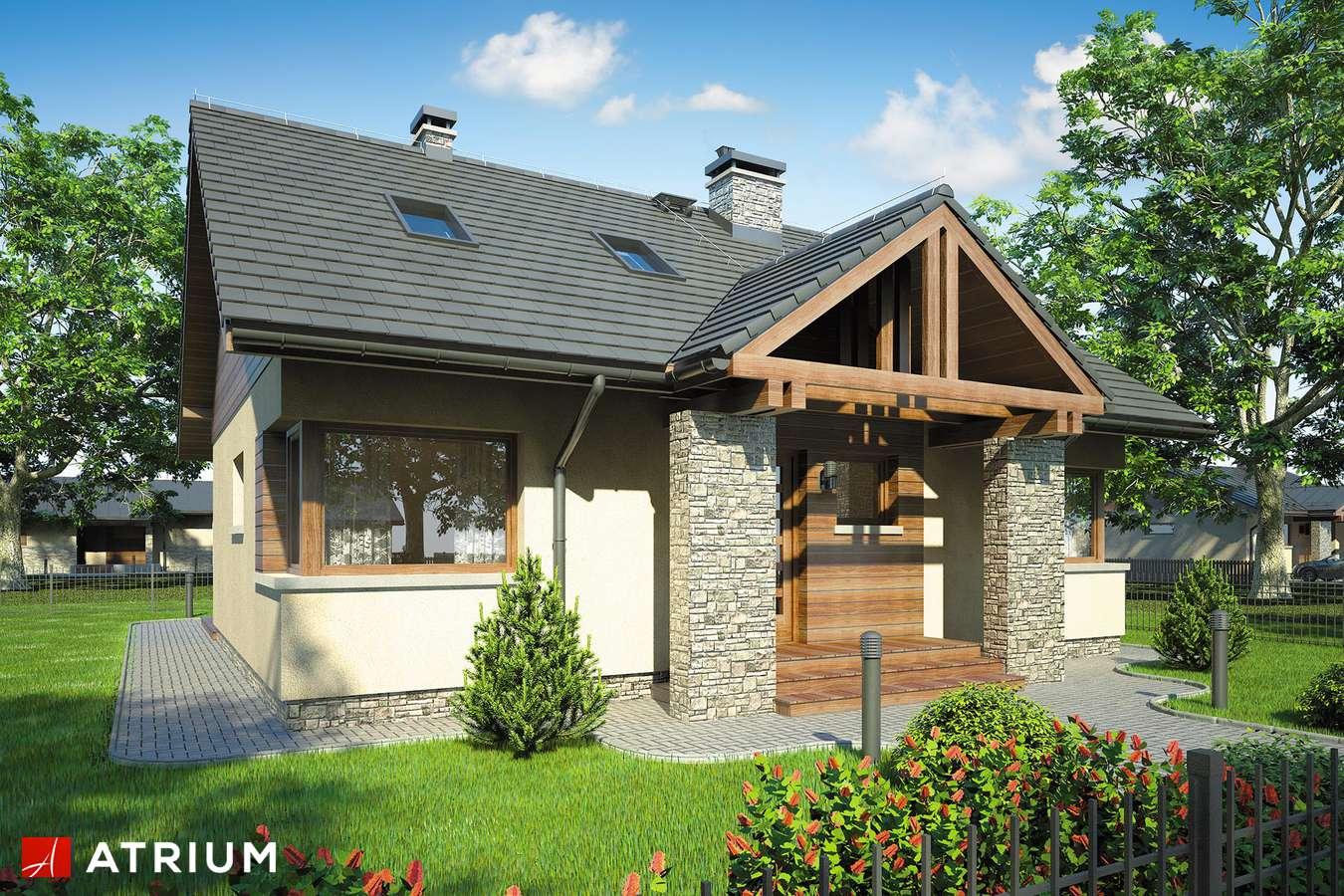 Projekty domów - Projekt domu z poddaszem RICARDO V - wizualizacja 1