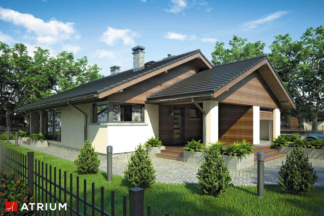 Projekty domów - Projekt domu parterowego PELIKAN V - wizualizacja 1