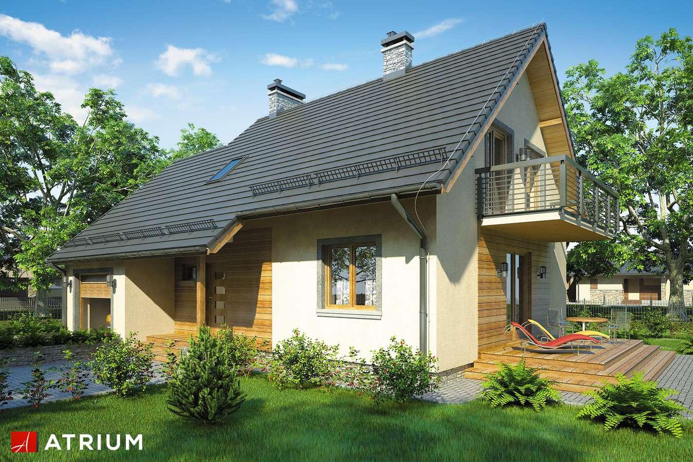 Projekty domów - Projekt domu z poddaszem OMEGA PLUS - wizualizacja 1