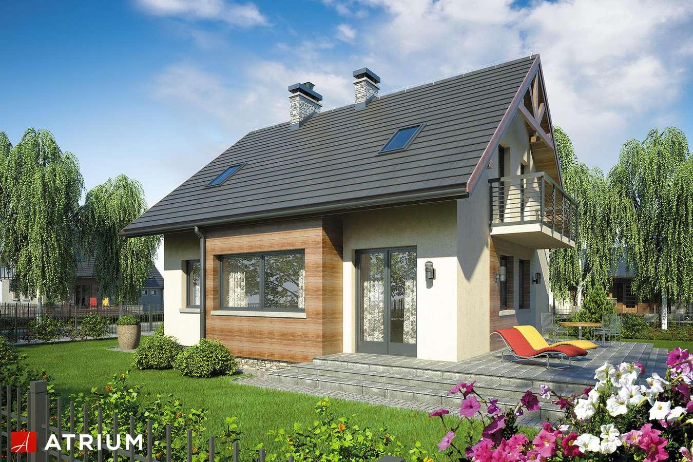 Projekty domów - Projekt domu z poddaszem HUGO - wizualizacja 1