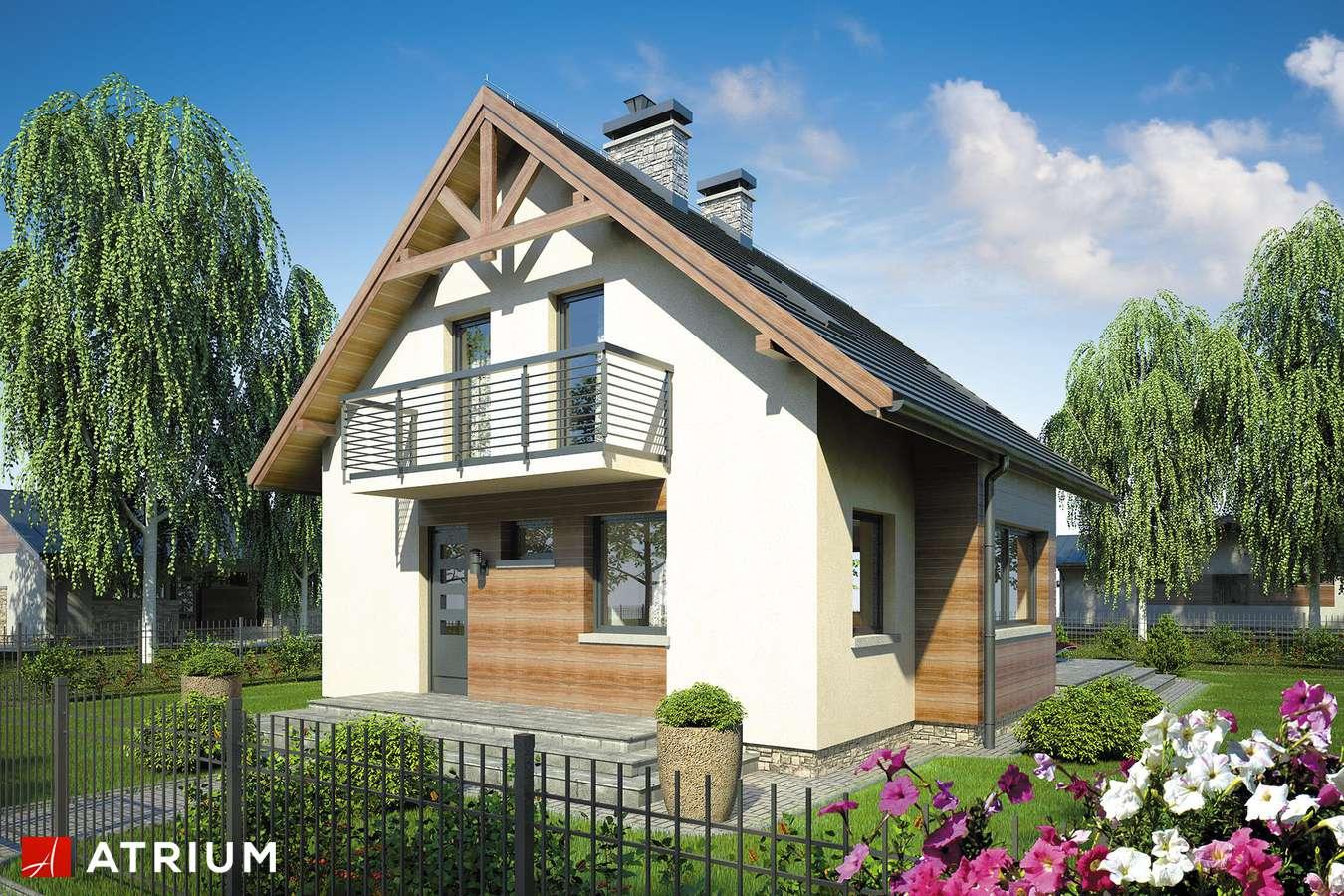 Projekty domów - Projekt domu z poddaszem HUGO - wizualizacja 2