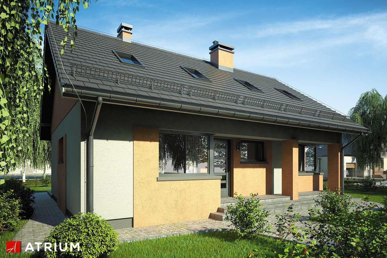 Projekty domów - Projekt domu z poddaszem RICARDO VII - wizualizacja 1