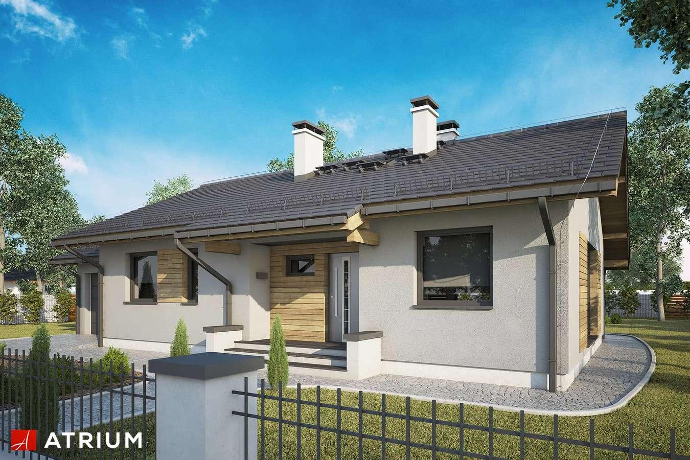 Projekty domów - Projekt domu parterowego NEO III - wizualizacja 2