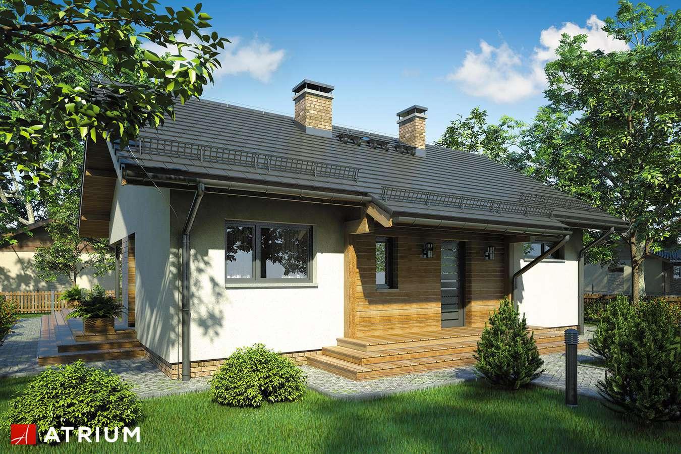 Projekty domów - Projekt domu parterowego AMBER III - wizualizacja 1