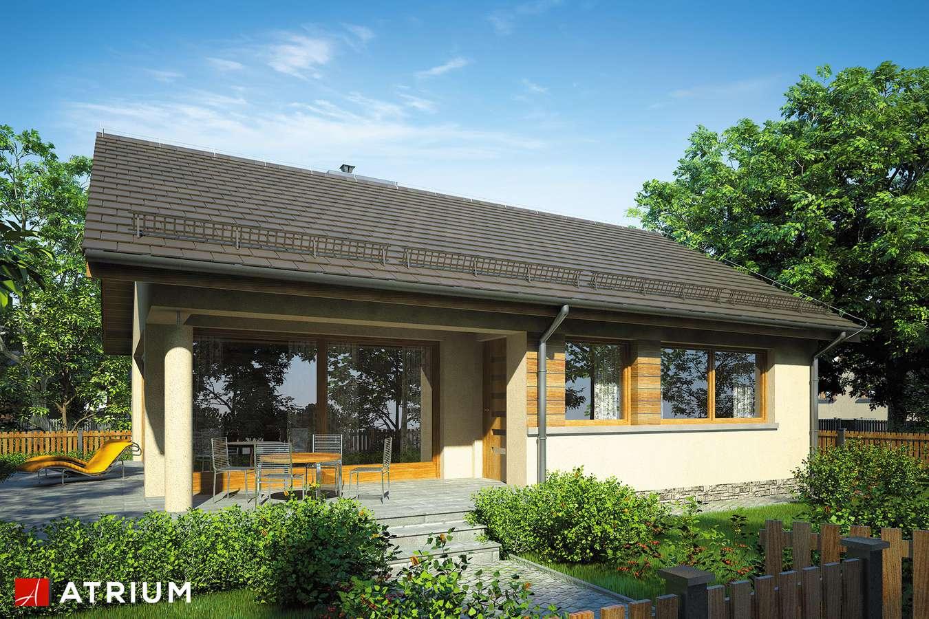 Projekty domów - Projekt domu parterowego WEKTOR VI - wizualizacja 1