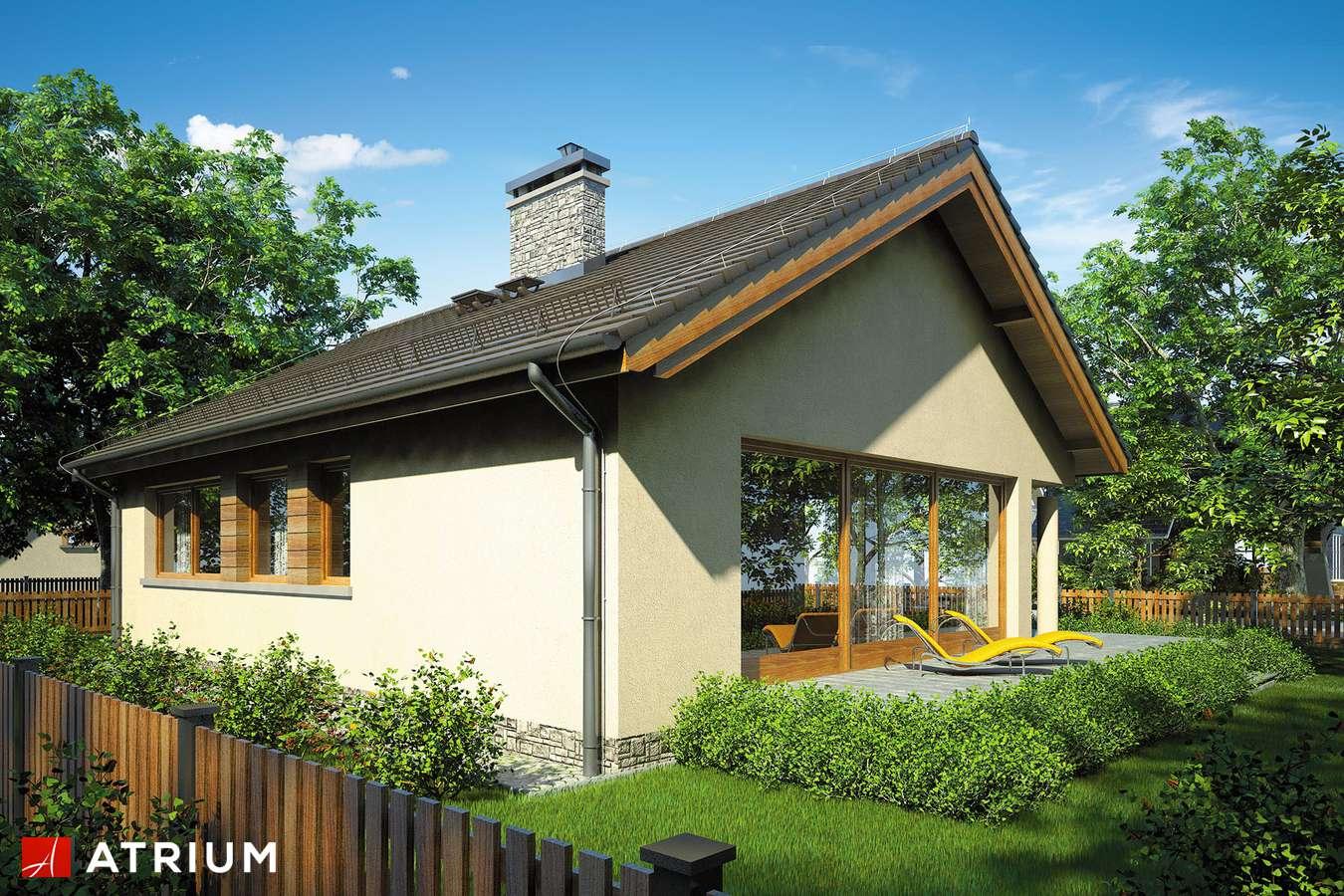 Projekty domów - Projekt domu parterowego WEKTOR VI - wizualizacja 2
