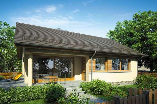 Projekt domu Wektor VI
