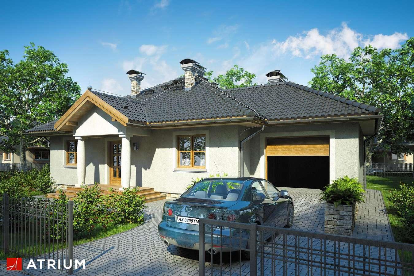 Projekty domów - Projekt domu parterowego TEXAS II - wizualizacja 1