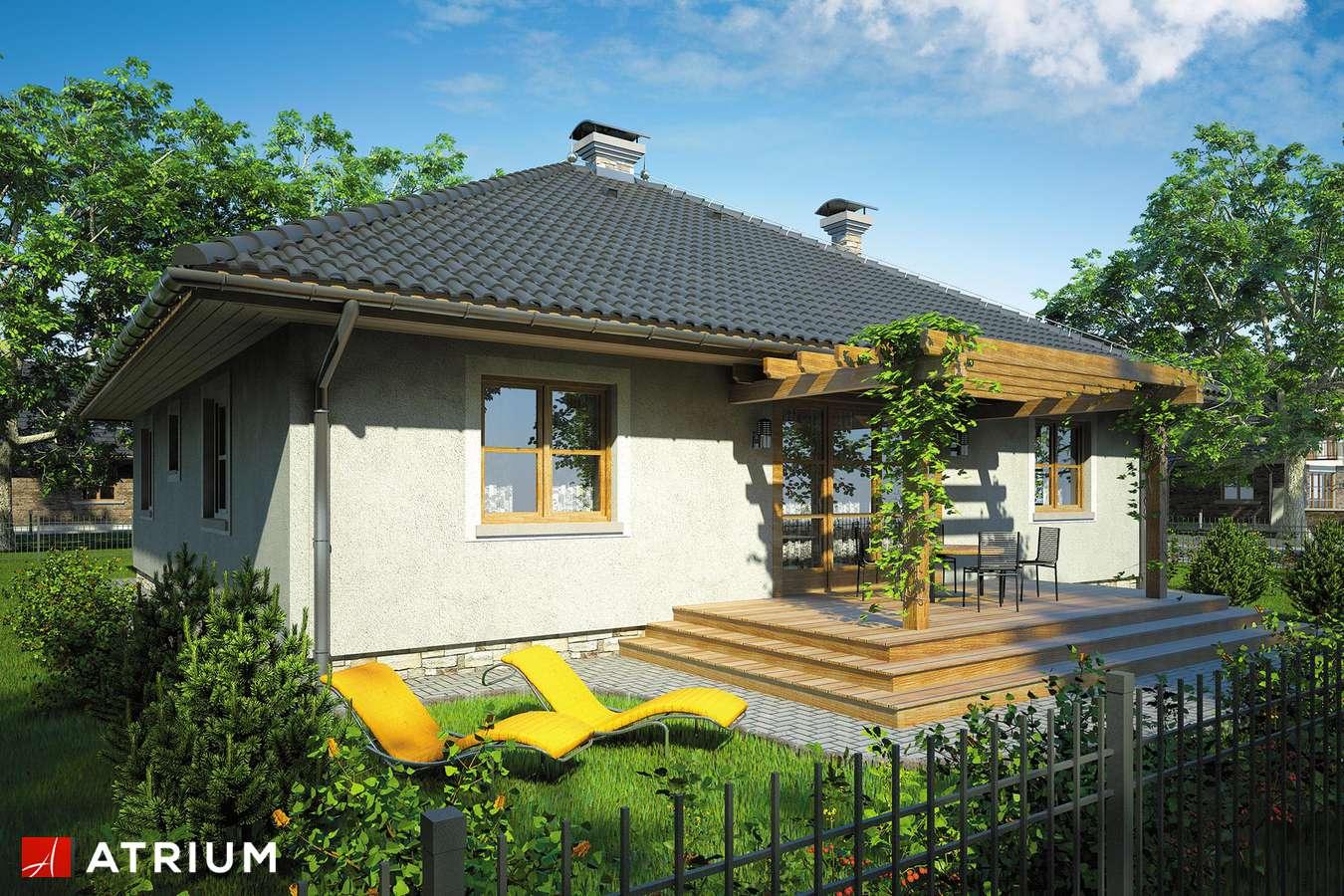 Projekty domów - Projekt domu parterowego TEXAS II - wizualizacja 2