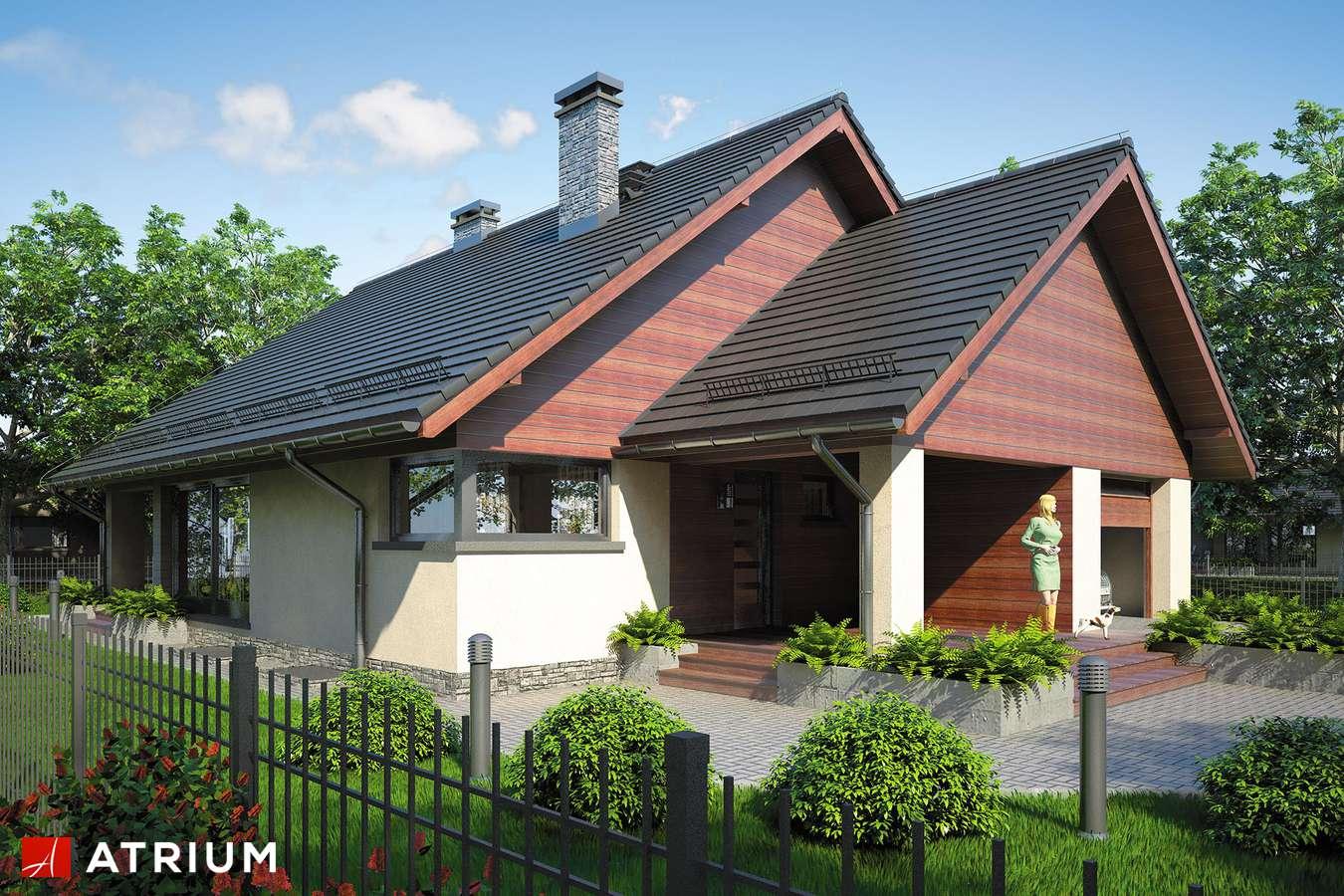 Projekty domów - Projekt domu parterowego PELIKAN VII - wizualizacja 1