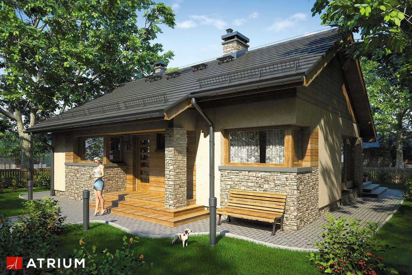 Projekty domów - Projekt domu parterowego RICARDO XI - wizualizacja 1