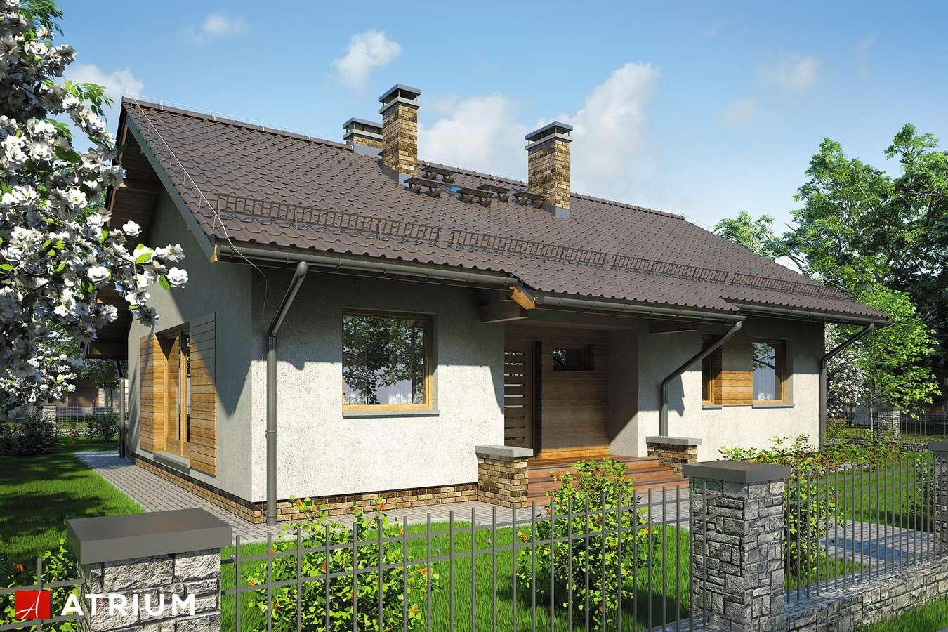 Projekty domów - Projekt domu parterowego NEO VI - wizualizacja 1